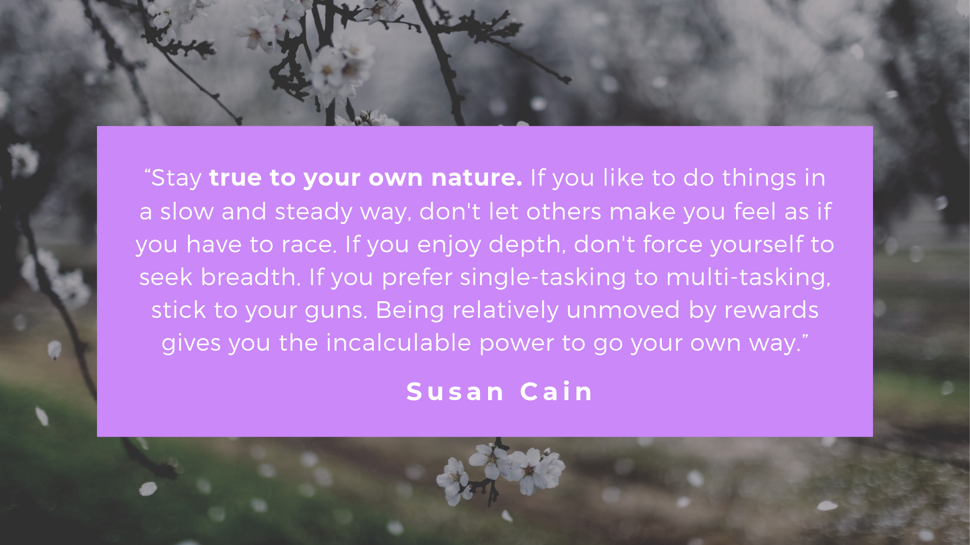Quote from Susan Cain's Quiet to Inspire Introverted Architects | Archisnapper 3